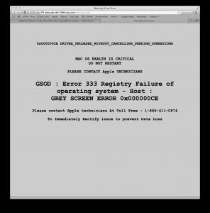 Warning Virus Error screen in Safari